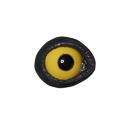 Goldeneye Lids and Eyes (GE)