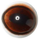Brown Flex Deer Eye with white Sclera (BSD)